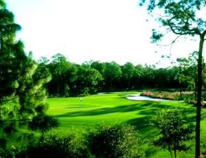 Golf Club at Mediterra