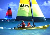 Another Perk of Owning Ft. Myers real estate - Daily Excitement - Ft. Myers Sailing