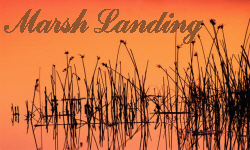 Marsh Landing Homes for Sale