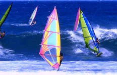 A Perk of Owning St. Petersburg, Florida Real Estate - St. Pete Windsurfing