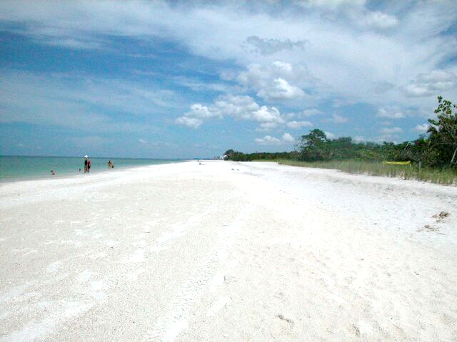 A Perk of Owning Bonita Springs Real Estate - Bonita Beach