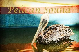 Pelican Sound Homes for Sale