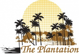 The Plantation Real Estate for Sale