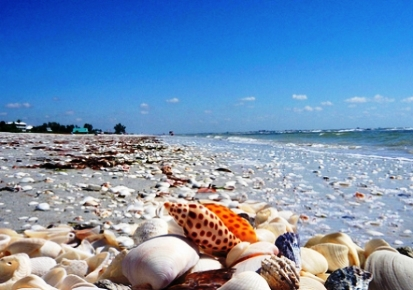 Sanibel Island, FL Homes for Sale